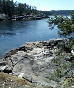 Smuggler Cove 468