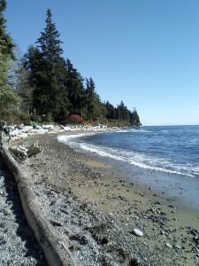 RC Beach 537